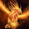 Zdjęcie profilowe użytkownika feniks